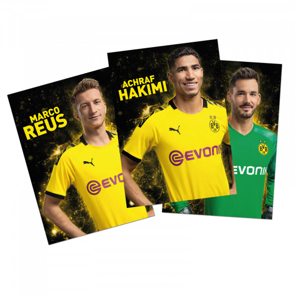 BVB Autograph card set 19/20