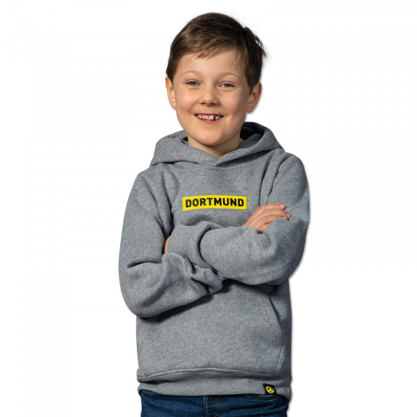BVB BOX LOGO Hoodie for Kids Grey