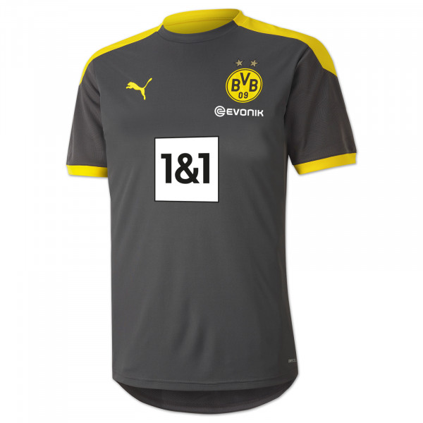 BVB Training Shirt 20/21 (grey)