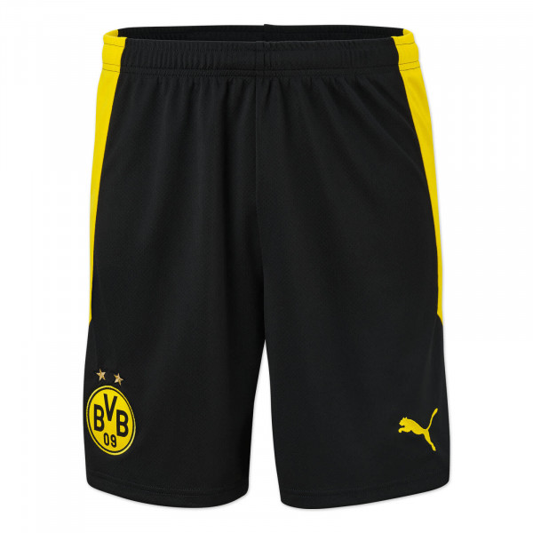 BVB Shorts 20/21 (black)
