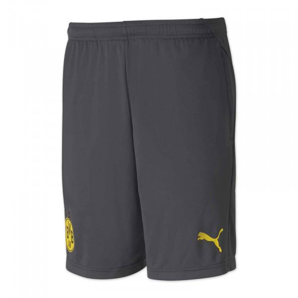 BVB Training Shorts 20/21 (Grey)