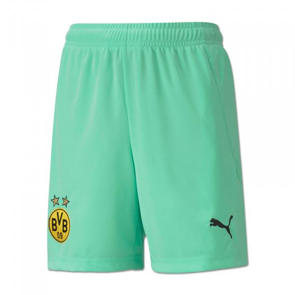 Pantalones de portero del BVB 20/21 (verde)