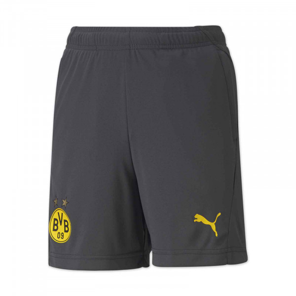 BVB Training Shorts 20/21 for Kids (Grey)