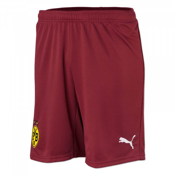 BVB Goalkeeper Shorts 21/22 (Red) for Kids