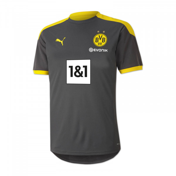 BVB Training Shirt 20/21 for children (grey)