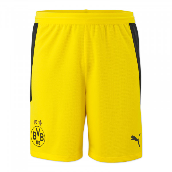 BVB Shorts 20/21 (yellow)