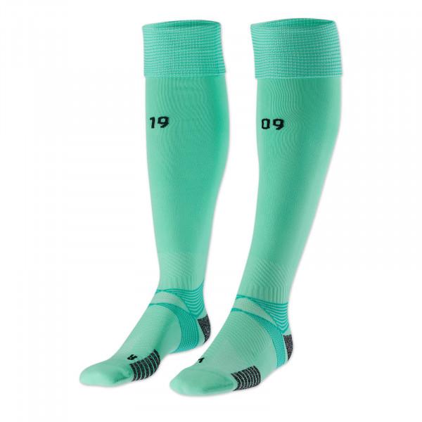 BVB Socks 20/21 (green)